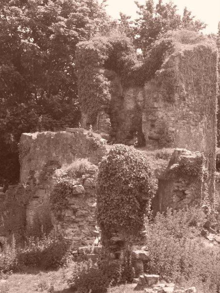 Haroldston Ruins, Haverford west. Pic: G L Davies