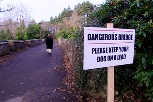 Have over 600 dogs tried to end their lives on this bridge?