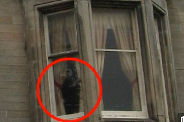 This picture is said to be of the Ghost the Overtoun Lady. Is she responsible for the deaths of the dogs?
