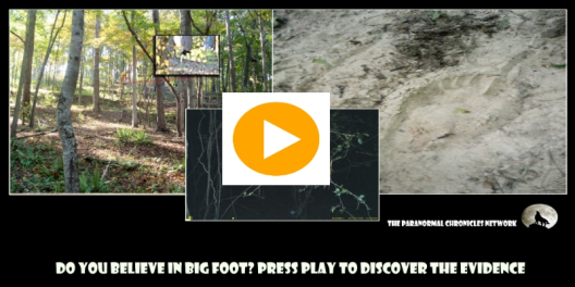 bigfoot ad
