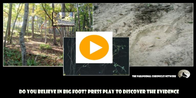 bigfoot ad