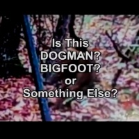 BIGFOOT! THE PROOF
