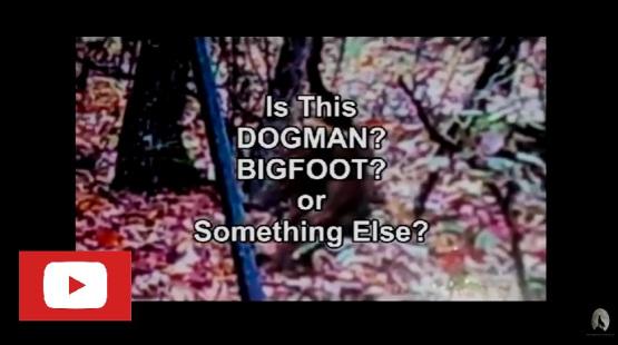bigfoot video screen