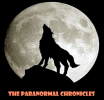 The paranormal chronicles