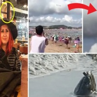 GHOST PICS, STRANGE CREATURES, UFO'S AND MYSTERIOUS RADIO SIGNALS...
