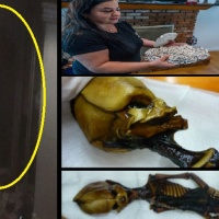 """Alien MYSTERY solved? Models GHOST pics, """"BIGFOOT IS REAL!"""", DEMON Cat & more..."""