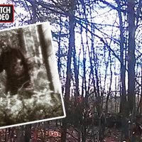 Monsterous CREATURE spotted, Blackpool HAUNTING, Hunter mistakes a man for BIGFOOT, UFO sighting & More!!!