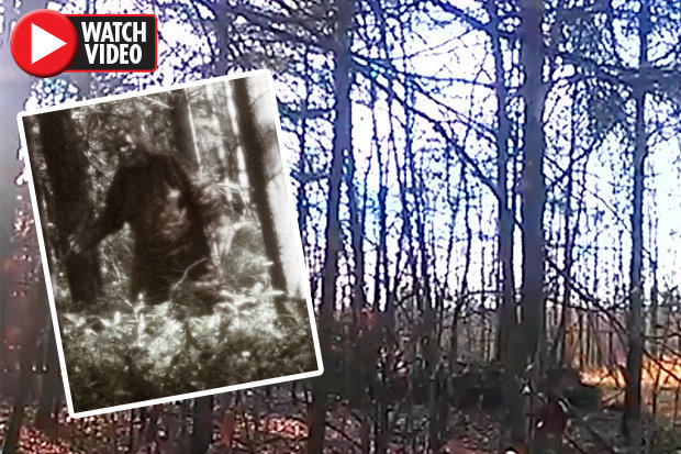 Bigfoot-jpg-722330