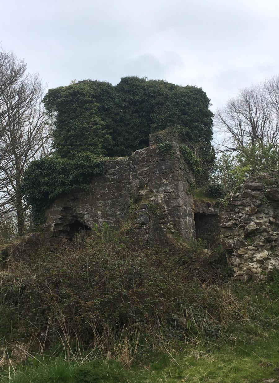new ruins 1